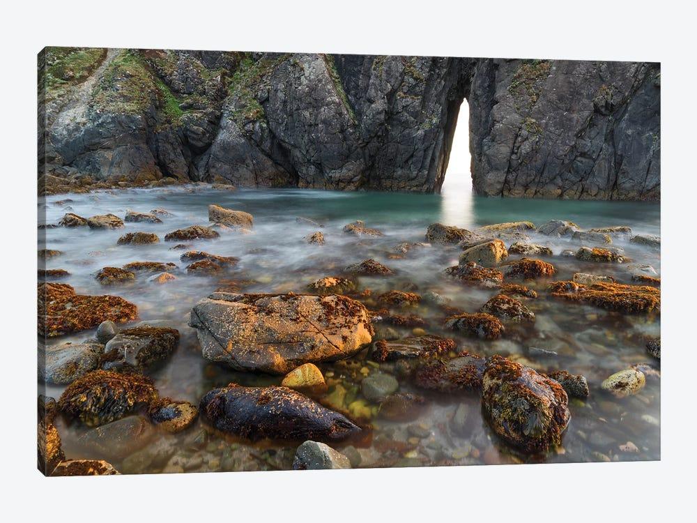 Coastal arch, Harris Beach State Park, Oregon by Jeff Foott 1-piece Canvas Print