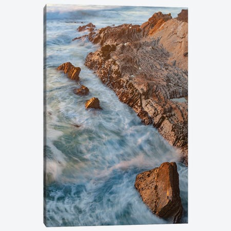 Coastline, Montana de Oro State Park, California Canvas Print #JFF26} by Jeff Foott Canvas Print