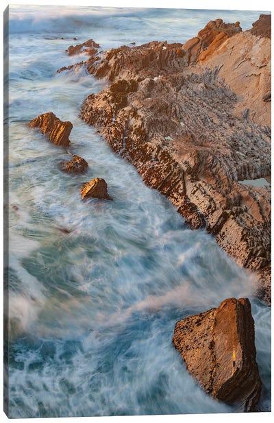 Coastline, Montana de Oro State Park, California Canvas Art Print