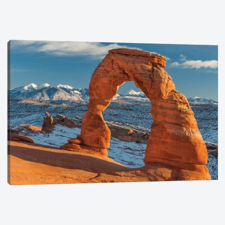 Delicate Arch and the La Sal Mountains, Arches National Park, Utah Canvas Print #JFF29} by Jeff Foott Canvas Artwork