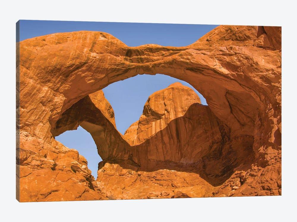 Double Arch,a pothole arch, Arches National Park, Utah by Jeff Foott 1-piece Canvas Art Print