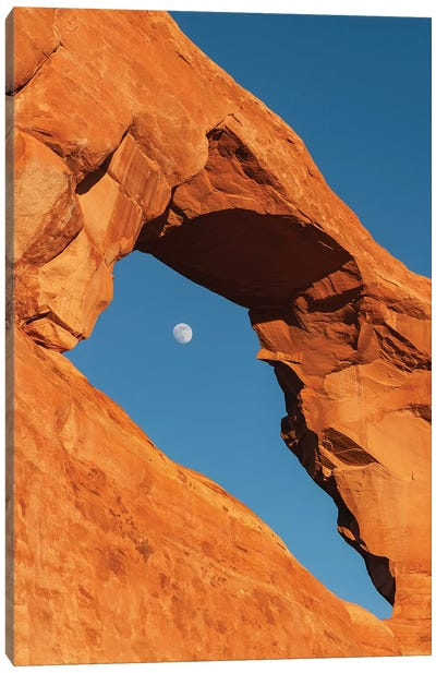 Full moon through Skyline Arch, Arches National Park, Utah Canvas Art Print