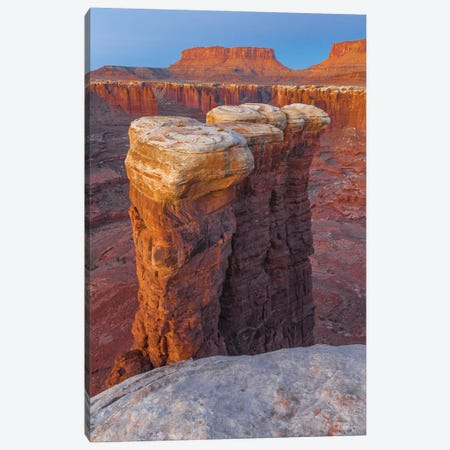 Junction Butte In Monument Basin At Sunrise, Canyonlands National Park, Utah Canvas Print #JFF53} by Jeff Foott Canvas Art Print