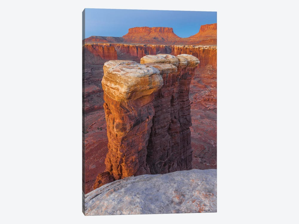 Junction Butte In Monument Basin At Sunrise, Canyonlands National Park, Utah by Jeff Foott 1-piece Canvas Art Print