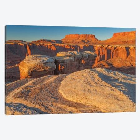 Junction Butte in Monument Basin at sunrise, Canyonlands National Park, Utah Canvas Print #JFF54} by Jeff Foott Canvas Artwork