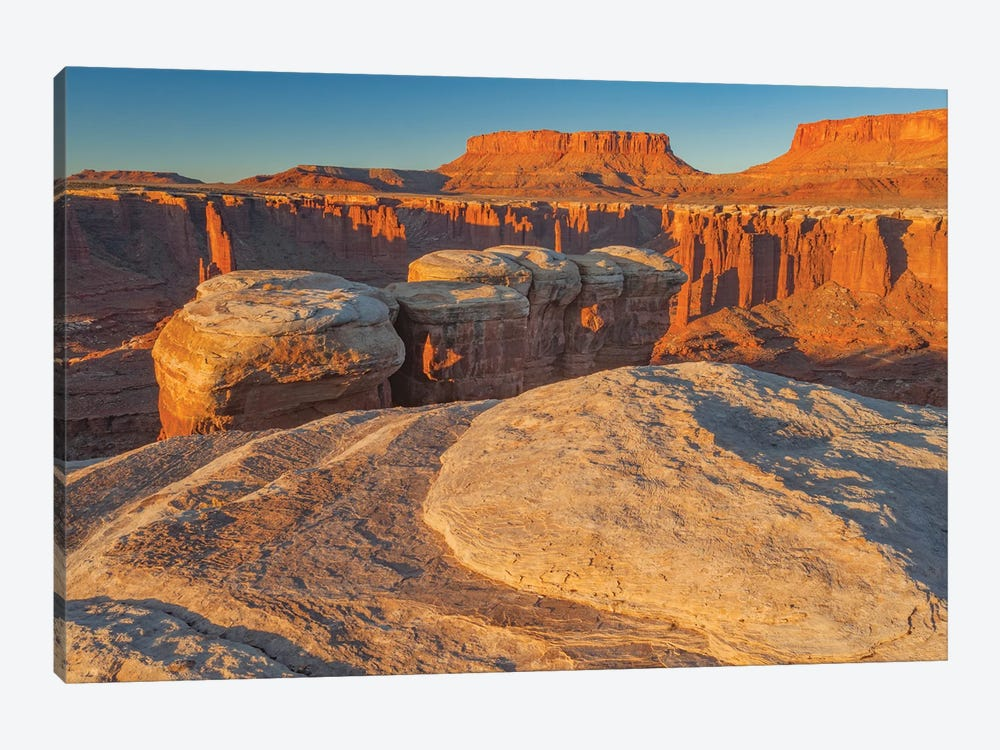 Junction Butte in Monument Basin at sunrise, Canyonlands National Park, Utah by Jeff Foott 1-piece Canvas Wall Art