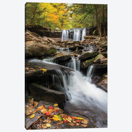 Oneida Falls, Ricketts Glen State Park, Pennsylvania Canvas Print #JFF65} by Jeff Foott Art Print