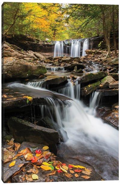 Oneida Falls, Ricketts Glen State Park, Pennsylvania Canvas Art Print