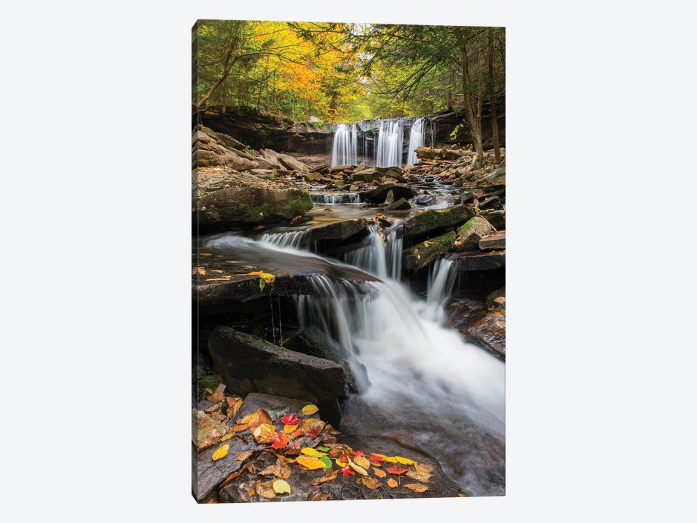 Oneida Falls, Ricketts Glen State Park, Pennsylvania by Jeff Foott 1-piece Canvas Art