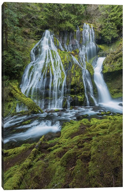 Panther Falls, Columbia River Gorge, Washington Canvas Art Print