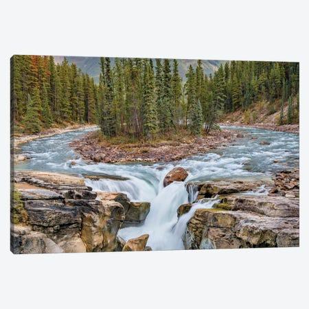 Sunwapta Falls, Sunwapta River, Jasper National Park, Alberta, Canada Canvas Print #JFF89} by Jeff Foott Canvas Artwork