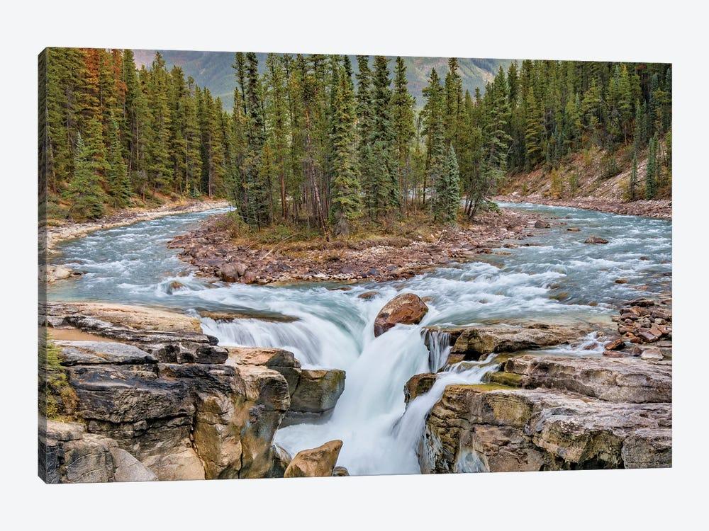 Sunwapta Falls, Sunwapta River, Jasper National Park, Alberta, Canada by Jeff Foott 1-piece Canvas Art