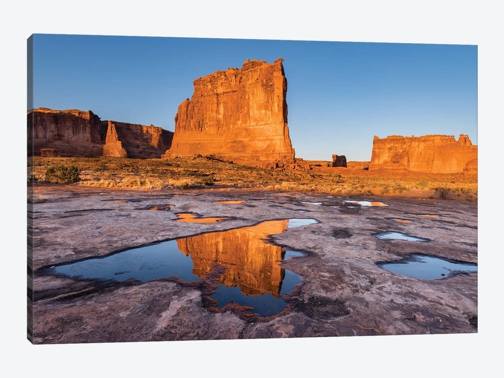 The Organ reflect in pool, Arches National Park, Utah by Jeff Foott 1-piece Art Print