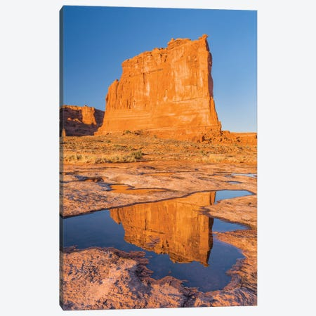 The Organ reflected in pool, Arches National Park, Utah Canvas Print #JFF92} by Jeff Foott Canvas Print