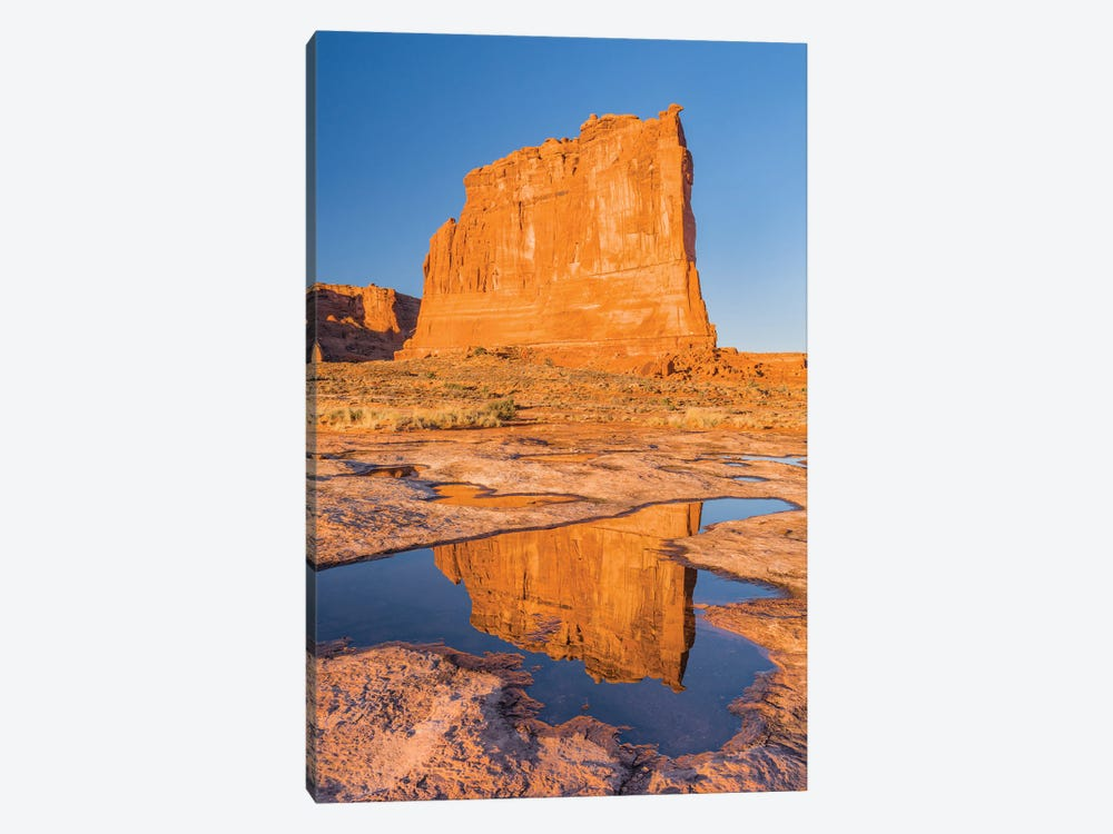 The Organ reflected in pool, Arches National Park, Utah by Jeff Foott 1-piece Canvas Wall Art