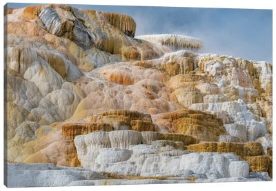 Travertine formations, Mammoth Hot Springs, Yellowstone National Park, Wyoming Canvas Art Print