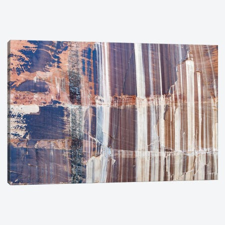 Water Stained Cliff, Calf Creek Falls, Grand Staircase-Escalante National Monument, Utah Canvas Print #JFF9} by Jeff Foott Art Print