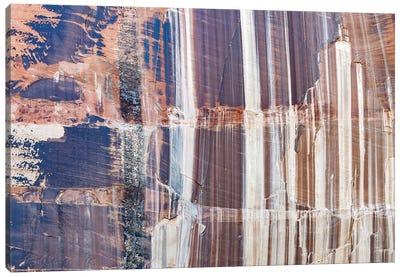 Water Stained Cliff, Calf Creek Falls, Grand Staircase-Escalante National Monument, Utah Canvas Art Print