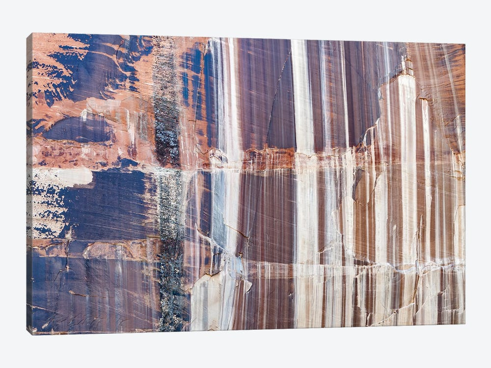 Water Stained Cliff, Calf Creek Falls, Grand Staircase-Escalante National Monument, Utah by Jeff Foott 1-piece Canvas Print