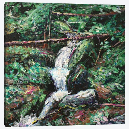 Secret Garden Canvas Print #JFJ13} by Jeff Johnson Canvas Art Print