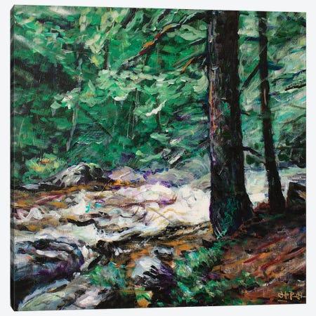 Strength of Old Canvas Print #JFJ15} by Jeff Johnson Canvas Artwork