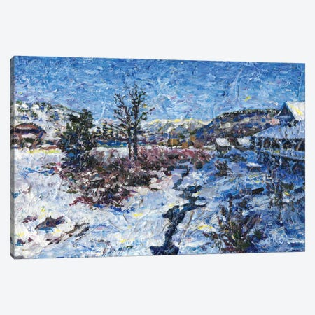 Winter's Quiet Canvas Print #JFJ20} by Jeff Johnson Canvas Wall Art