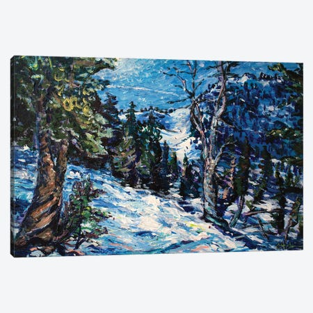 Mammoth Mountain Canvas Print #JFJ9} by Jeff Johnson Canvas Art Print