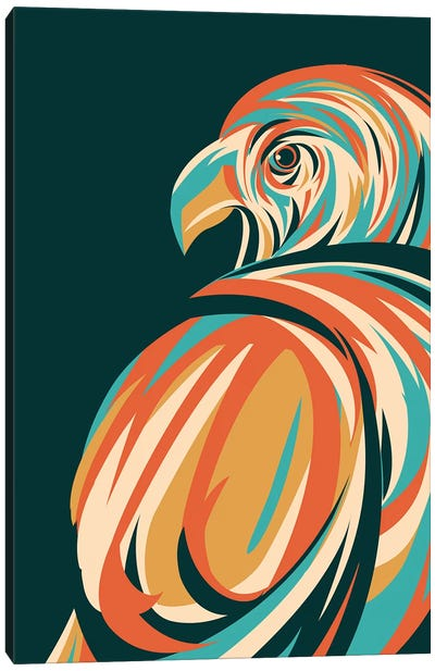 Hawk Canvas Art Print