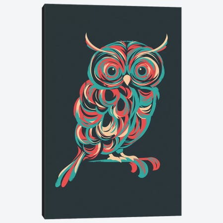 Night Owl Canvas Print #JFL49} by Jay Fleck Canvas Artwork