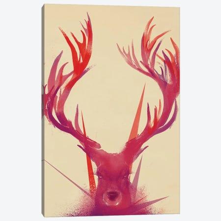 Points Canvas Print #JFL53} by Jay Fleck Canvas Art Print