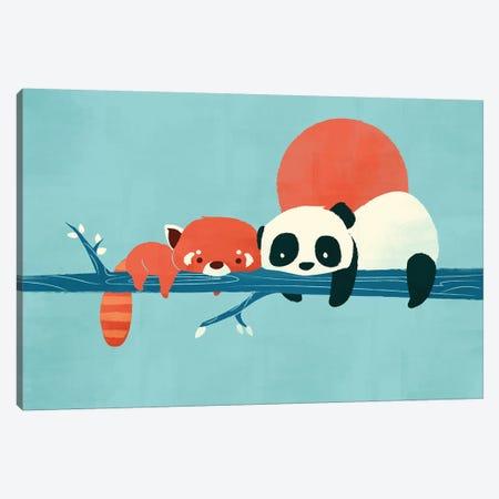 Pandas Canvas Print #JFL84} by Jay Fleck Canvas Print