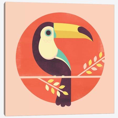 Toucan Canvas Print #JFL91} by Jay Fleck Canvas Print