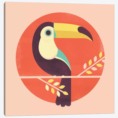 Toucan Canvas Print #JFL91} by Jay Fleck Canvas Print