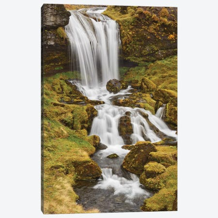 Iceland, Sheep'S Waterfall Canvas Print #JFO31} by John Ford Canvas Artwork