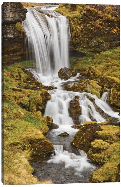 Iceland, Sheep'S Waterfall Canvas Art Print