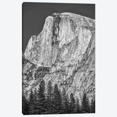 Usa, California, Yosemite, Half Dome Canvas Print #JFO51} by John Ford Canvas Art