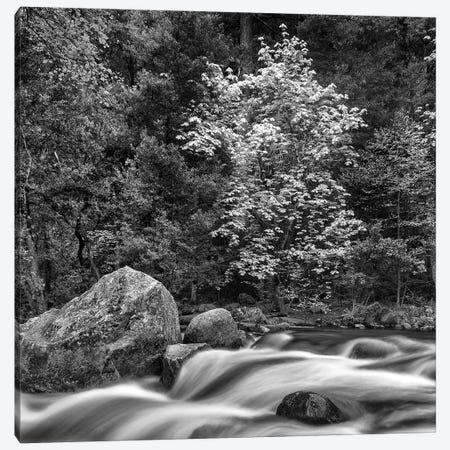 Usa, California, Yosemite, Happy Isles Canvas Print #JFO54} by John Ford Canvas Print