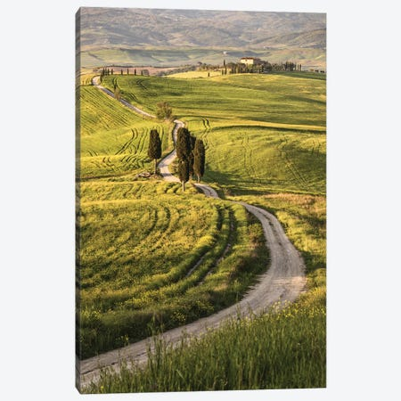 Europe, Italy, Tuscany, Val D'Orcia Canvas Print #JFO7} by John Ford Canvas Art Print