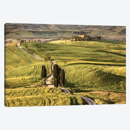 Europe, Italy, Tuscany, Val D'Orcia Canvas Print #JFO8} by John Ford Canvas Art