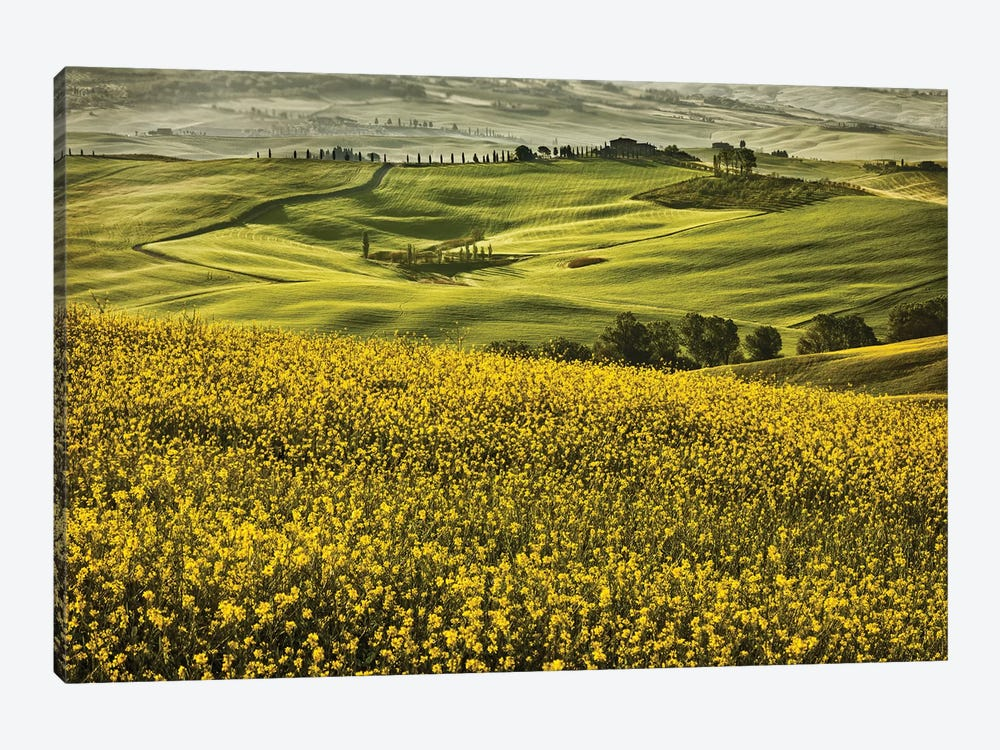 Europe, Italy, Tuscany, Val D'Orcia by John Ford 1-piece Canvas Art