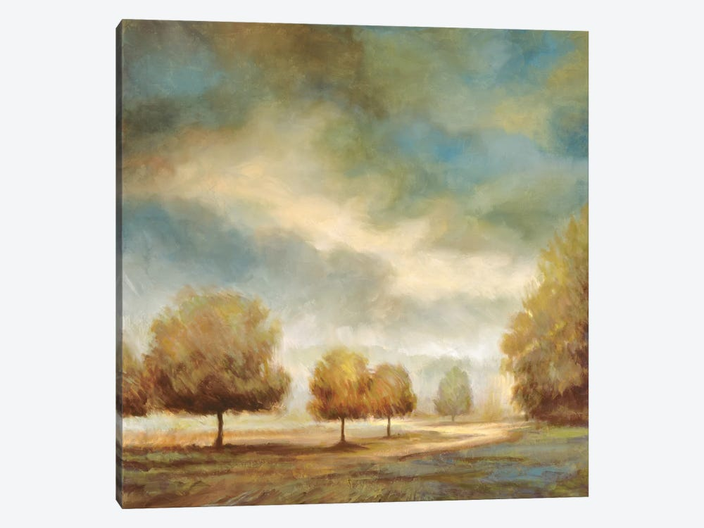 Light And Shadows I by Jeffrey Leonard 1-piece Canvas Art Print