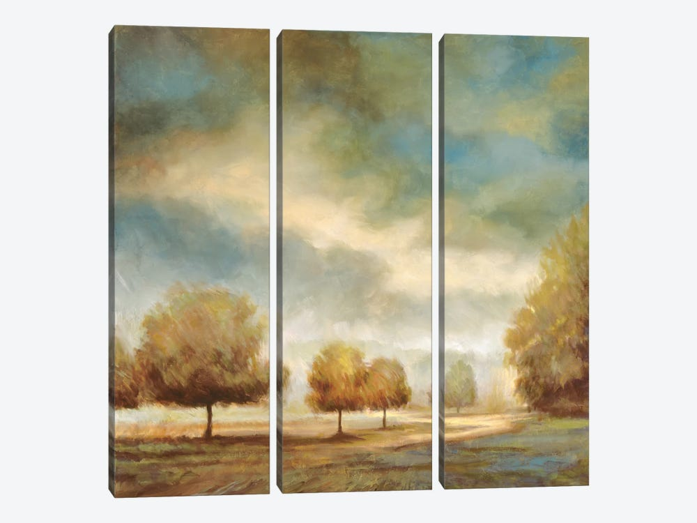 Light And Shadows I by Jeffrey Leonard 3-piece Art Print