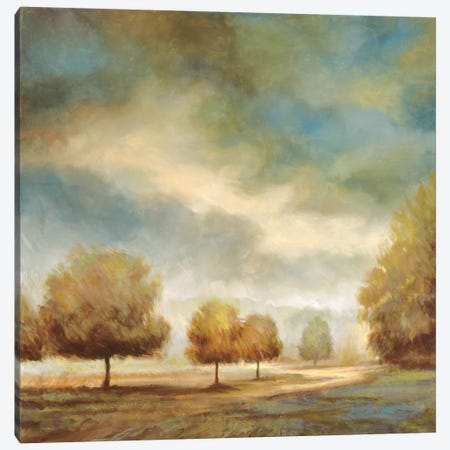 Light And Shadows I Canvas Print #JFR11} by Jeffrey Leonard Art Print