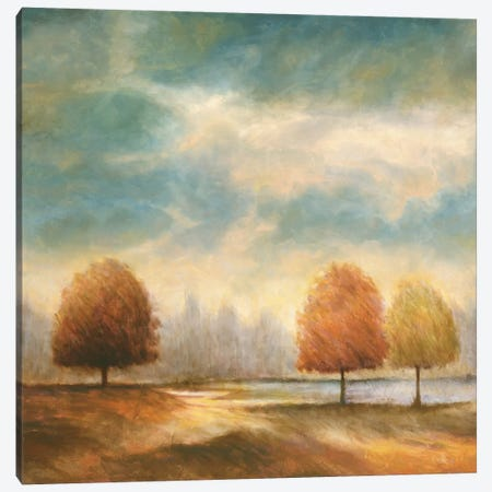 Light And Shadows II Canvas Print #JFR12} by Jeffrey Leonard Canvas Print