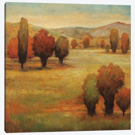 Hillside Meadow I Canvas Print #JFR3} by Jeffrey Leonard Canvas Art