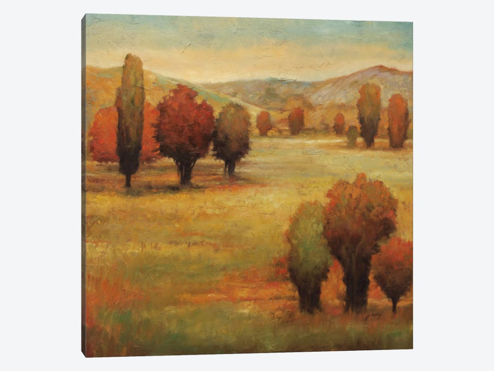 Hillside Meadow I by Jeffrey Leonard 1-piece Canvas Print