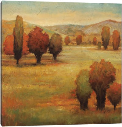 Hillside Meadow I Canvas Art Print