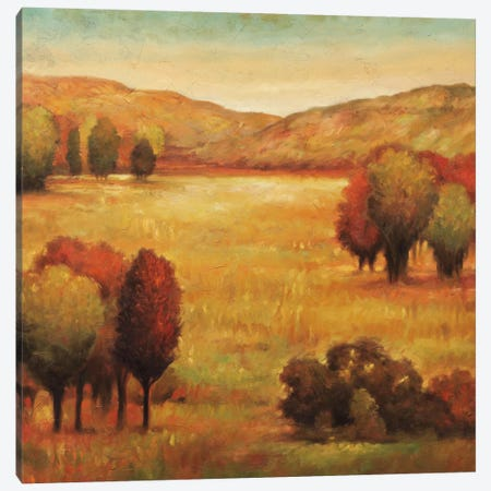 Hillside Meadow II Canvas Print #JFR4} by Jeffrey Leonard Canvas Art Print