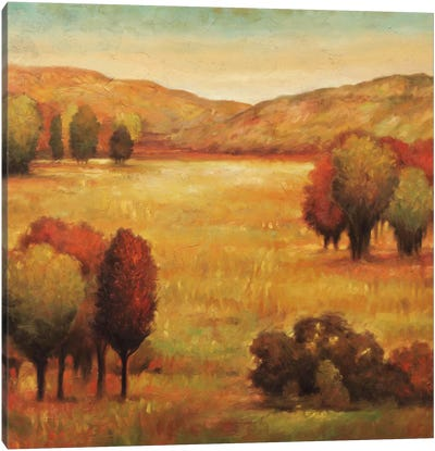 Hillside Meadow II Canvas Art Print