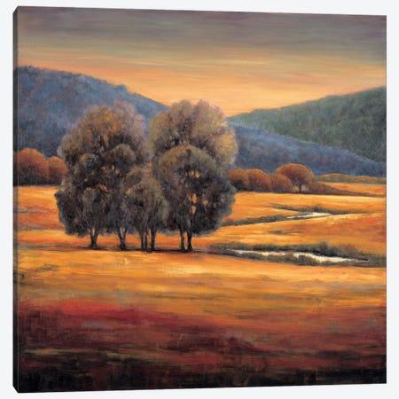 In All Its Glory I Canvas Print #JFR7} by Jeffrey Leonard Canvas Print